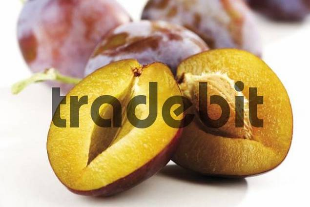 Halved plum Prunus