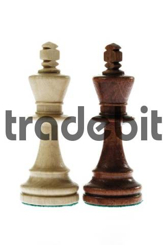 Chess pieces, white and brown king: rivals