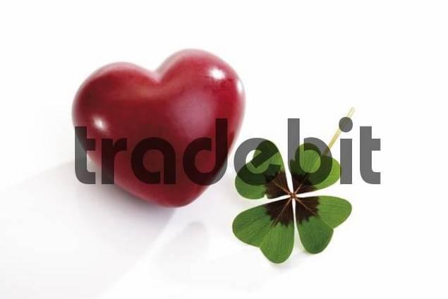 Heart and lucky clover, four-leaf clover