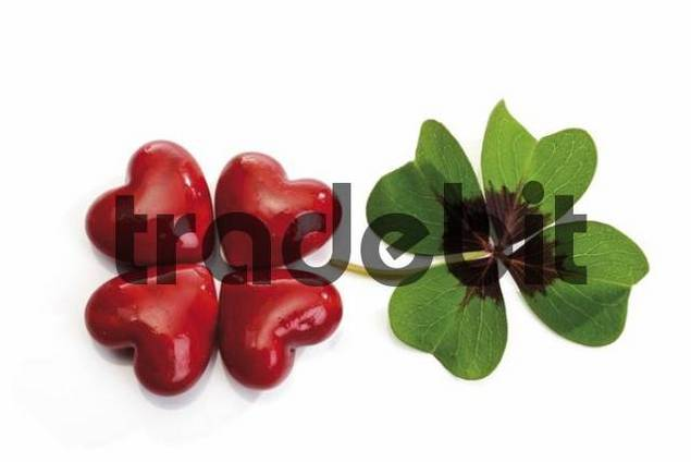 Four red hearts formed to resemble a four-leaf clover beside an actual four-leaf clover