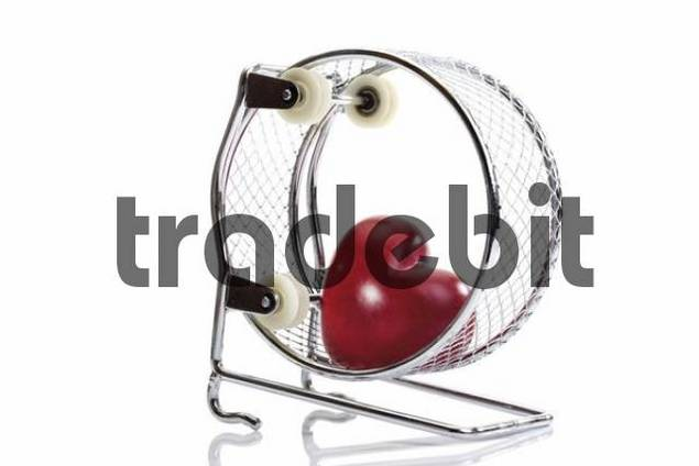 Red heart in a hamster wheel: athletes heart syndrome