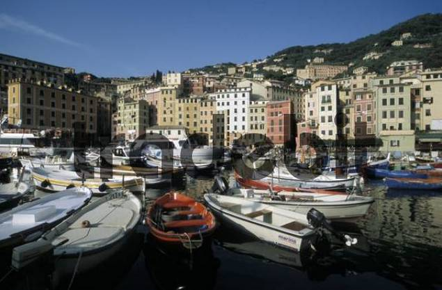 Harbour and historic centre of Camogli, Liguria, Italian Riviera, Italy, Europe