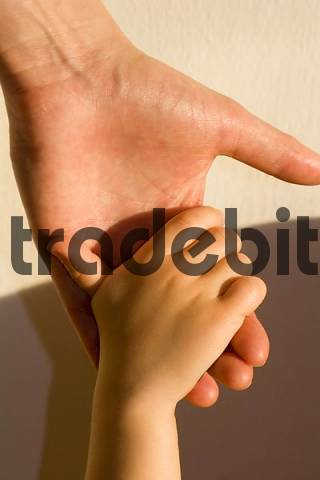 Adults and childs hands