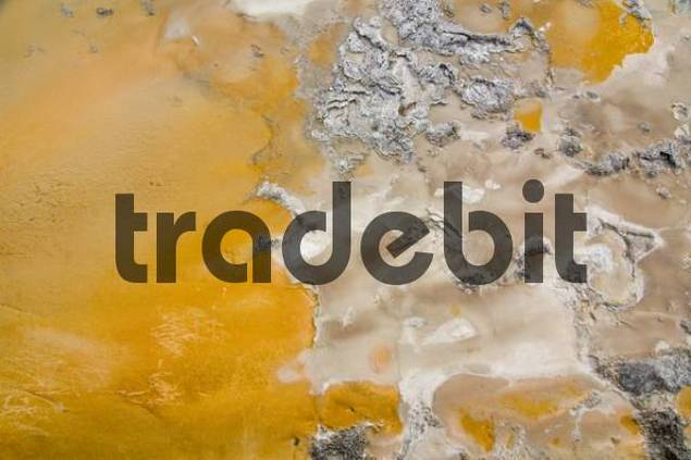 Detail of the Solitary Geyser in Upper Geyser Basin, Yellowstone National Park, Wyoming, USA