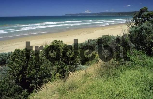 beach at the Great Ocean Road, Victoria, Australia