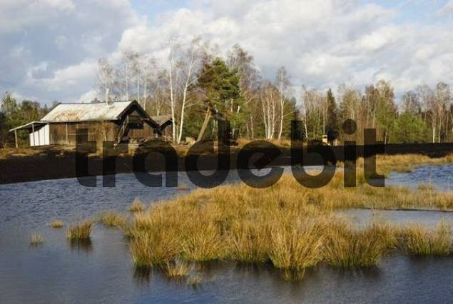 Wood cabin in front of a pond in a former peat working area, Nicklheim, Bavaria, Germany, Europe
