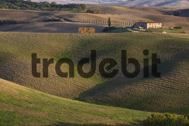 Typical farm, Crete, Tuscany, Italy, Europe