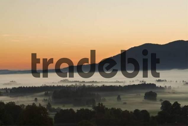 Fog-covered landscape, Bavarian pre-Alps, Upper Bavaria, Bavaria, Germany, Europe