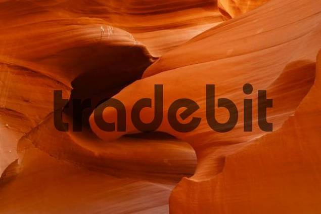 quotAmerican Eaglequot sandstone formation at Lower Antelope Canyon, Slot Canyon Arizona, USA, North America
