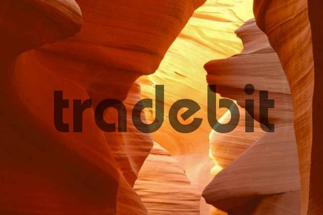 Sandstone formations, Lower Antelope Canyon, Slot Canyon, Arizona, USA, North America