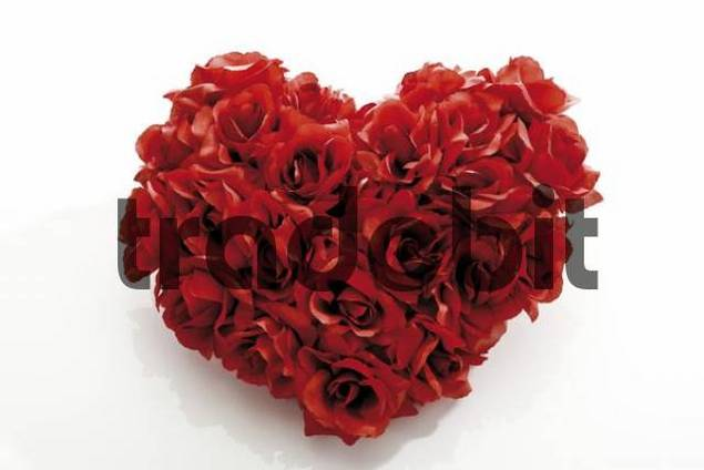 Red rose heart - symbol of love