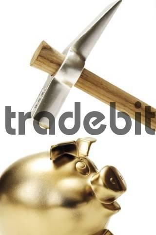 Golden piggy bank and hammer