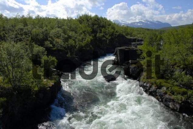 Turbulent mountain stream, Abisko National Park, Lapland, Sweden