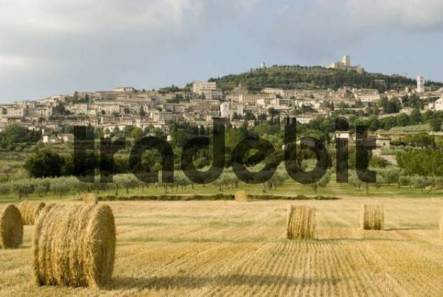 Bales of hay in a field in front of Assisi, Umbria, Italy