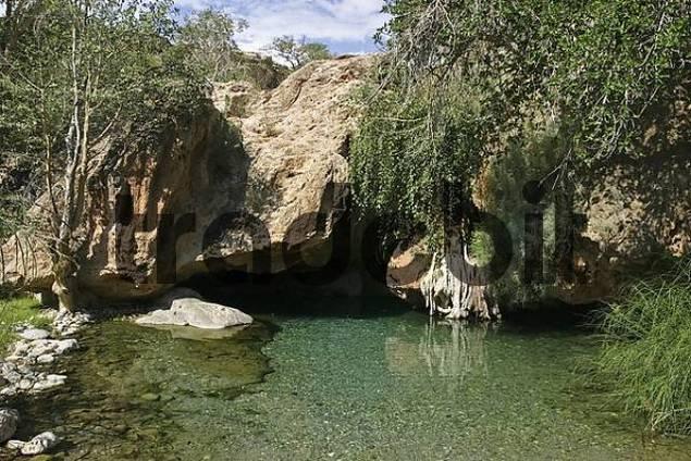 Ongongo Falls, small lagoon, Kaokoveld, Namibia, Africa