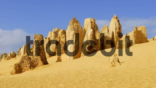 Limestone pillars, Pinnacles Desert, Nambung National Park, Western Australia, Australia