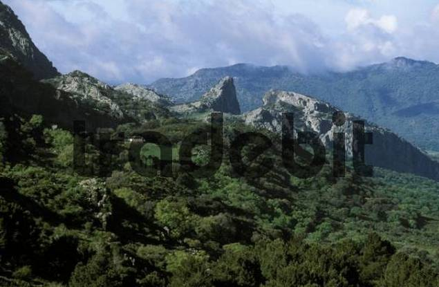 Salto del Cabrero, Sierra de Grazalema, Cdiz Province, Andalusia, Spain