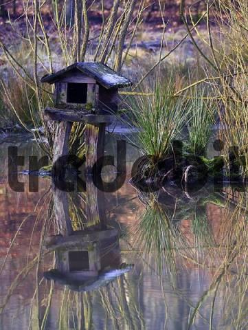 Duck house, Lueerwald Forest, Sauerland, North Rhine-Westphalia, Germany, Europe