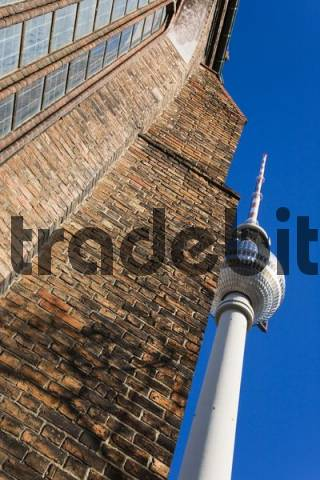 Detail, St. Marienkirche St. Marys Church and telecommunications tower, Alexanderplatz Square in Berlin, Germany