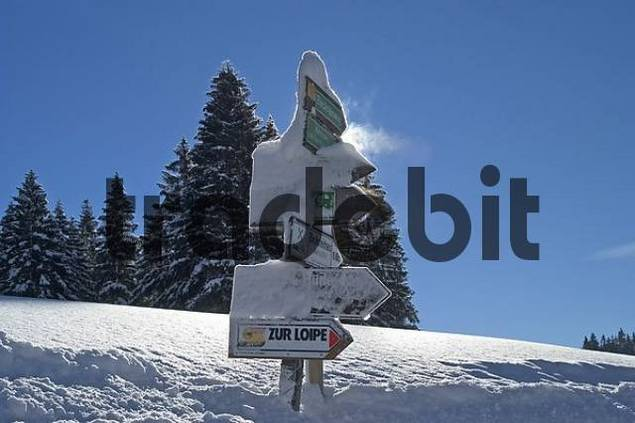 guideposts ito the cross-country ski run in the Valepp valley near Spitzingess lake Spitzing Upper Bavaria Germany