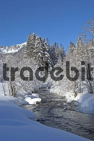 The river Rote Valepp near Albert Link House close to lake Spitzing Spitzingsee Upper Bavaria Germany