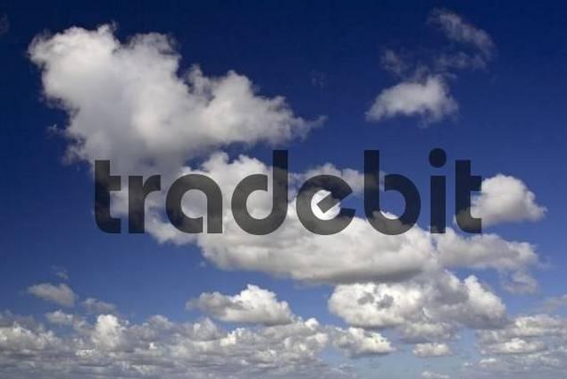 Puffy white clouds in a blue sky, Dithmarschen, Schleswig-Holstein, Germany
