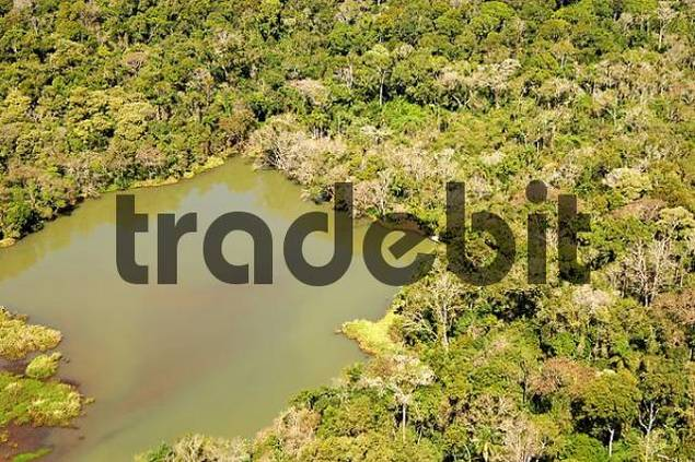 Lake in the rainforest aerial view Brazil