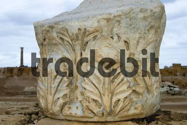 Corinthian capital Leptis, Sabratha, Libya