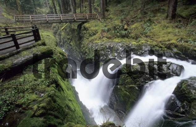 Sol Duc Falls in Sol Duc Valley of Olympic National Park, Washington State, USA