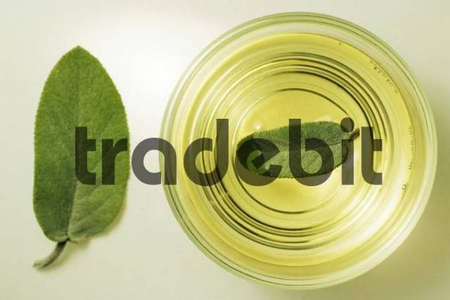 Sage tea in a glass