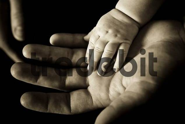 Babys hand in fathers hand