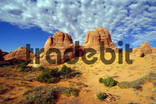 Rock formations near Arches Campground, Arches National Park, Utah, USA