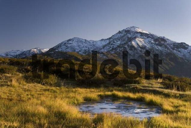 Mt. Gilfert and bog pond, Tux Alps, Tyrol, Austria, Europe