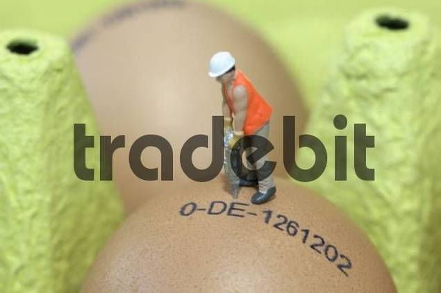 Miniature man wearing a hardhat drilling into a stamped egg in a carton of eggs
