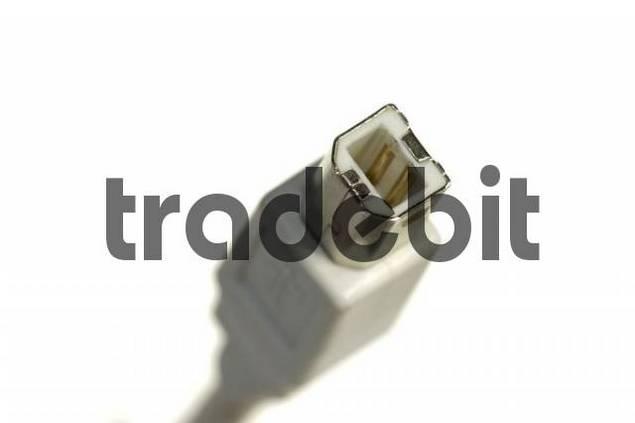 USB B-port
