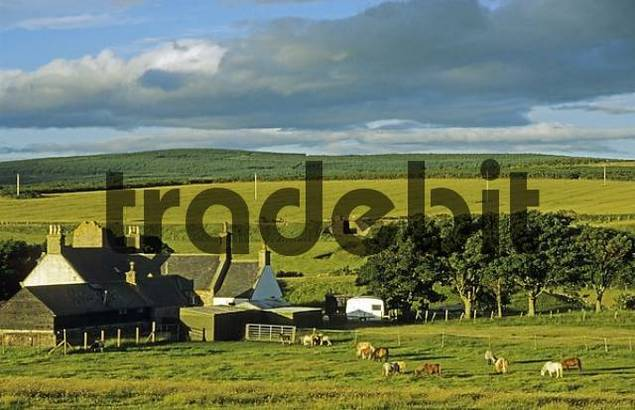 country live around edinburgh scotland