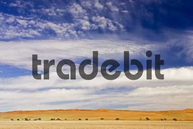 Desert landscape beneath dramatic blue and white sky at the edge of the Namib Desert, Namibia, Africa
