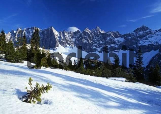 Laliderer Waende rock face, Karwendel Range, Tirol, Austria