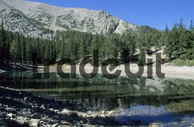 Teresa Lake with Mount Wheeler, Glacier Valley, Great Basin National Park, Nevada, USA