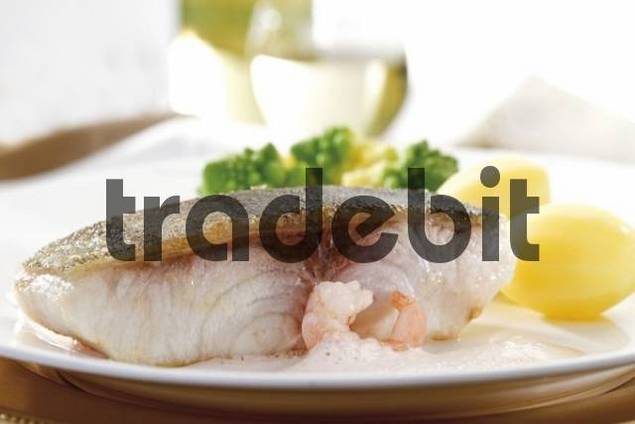 Seafood dish: cobia or black kingfish filet with boiled potatoes, Romanesco broccoli, shrimp and frothy white wine sauce served with a glass of white wine