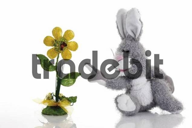 Stuffed rabbit, plush rabbit pointing its index finger toward an artificial flower