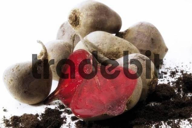 Fresh beets, one cut open