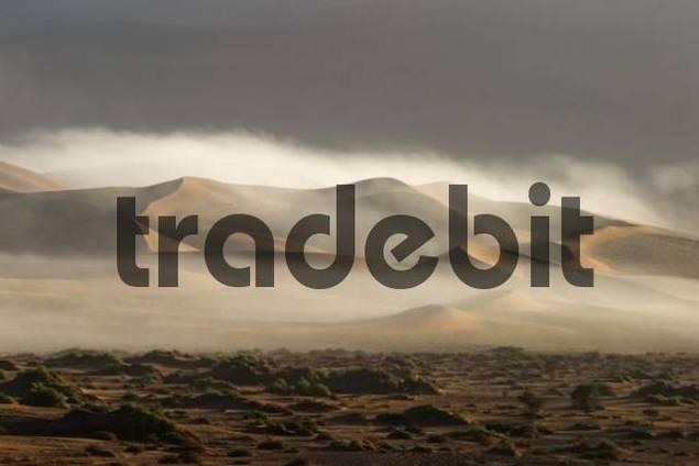 Coastal fog over sand dunes in Sossusvlei, Namib Desert, Namibia, Africa