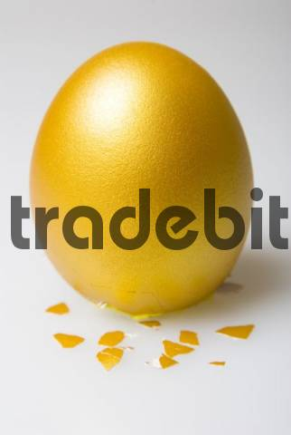 Egg of Columbus, golden egg standing on cracked bottom