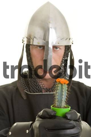Knight wearing a nasal helmet and leather gloves, holding a blooming cactus