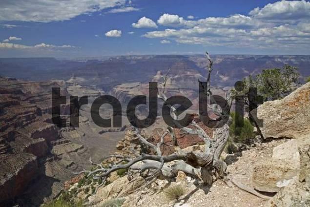 Yaki Point, Grand Canyon National Park, Arizona, USA