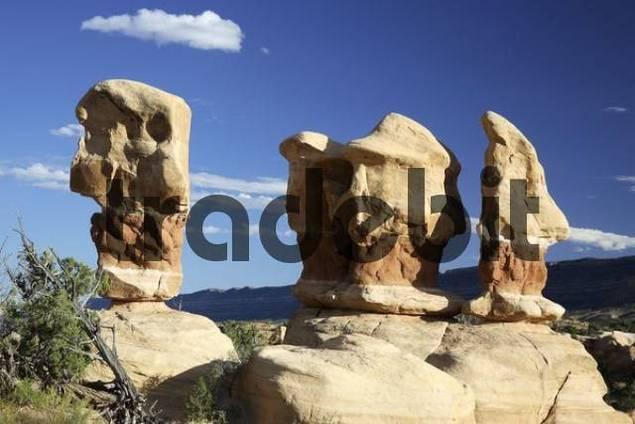 Rock formations, Devils Garden, Grand Staircase-Escalante National Monument, Utah, USA