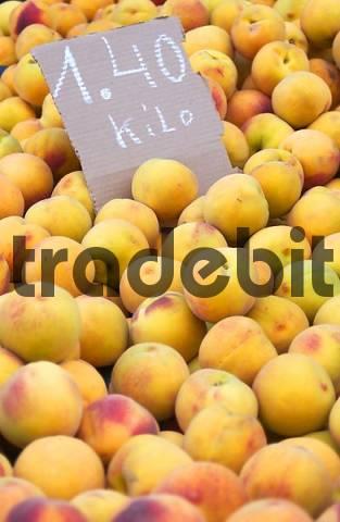 Nectarines with Price