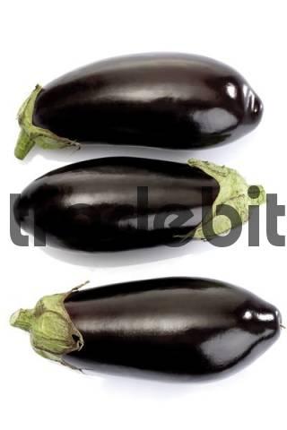 Aubergines, eggplants
