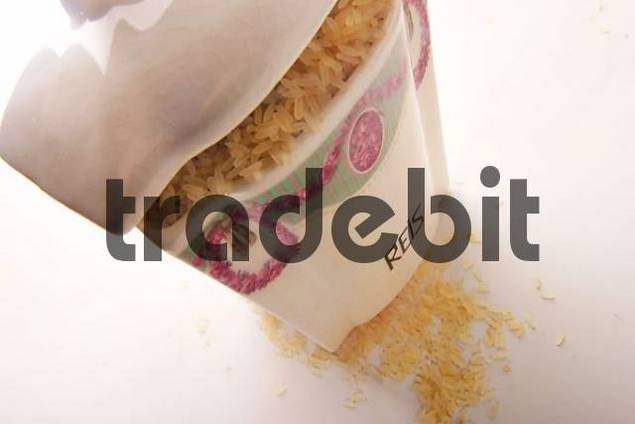 rice in porcelain